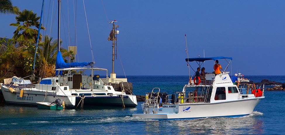 Kona Big Island Divers